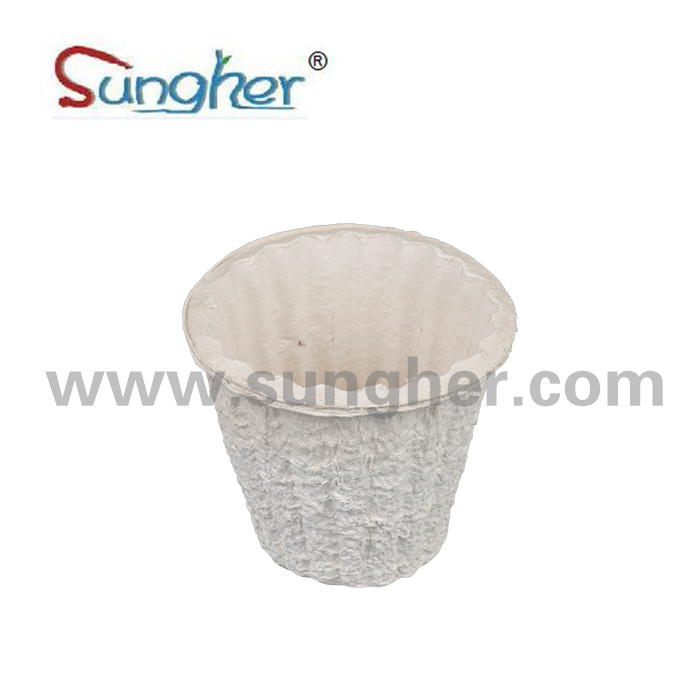 Paper Pulp Flower Pot Featured Image