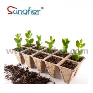 Paper Pulp Plant Tray – 2X5 Square Tray