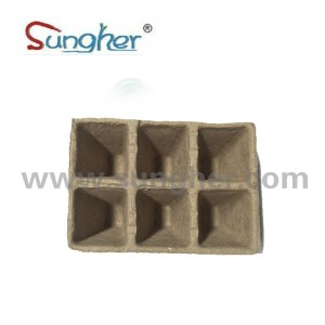 Paper Pulp Plant Tray – 2X3 Square Tray