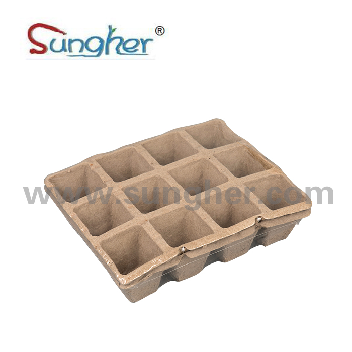 Paper Pulp Plant Tray – 3X4 Square Tray (big) Featured Image